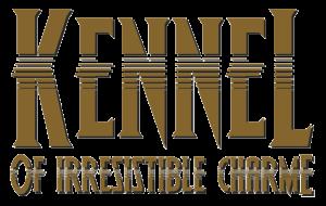 Logo-schwarz-hinterlegt